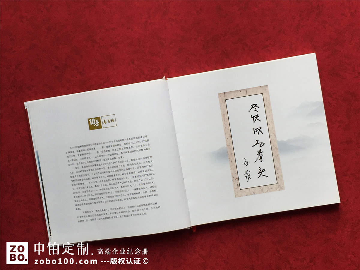 十周年企业纪念册-公司十周年庆典画册策划